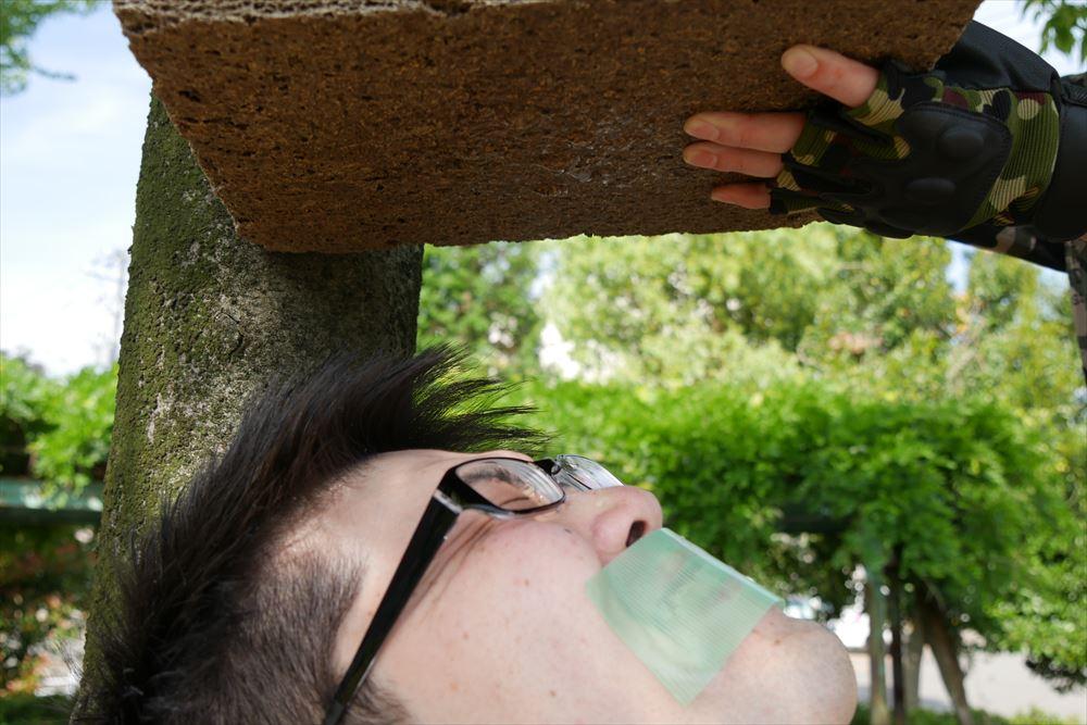 「グリーンビズ」の給水実験 : ペットボトル2本目 (3)