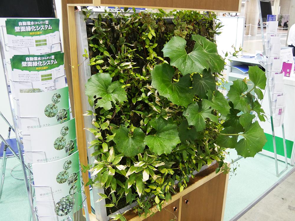 壁面緑化システム : 室内の設置イメージ
