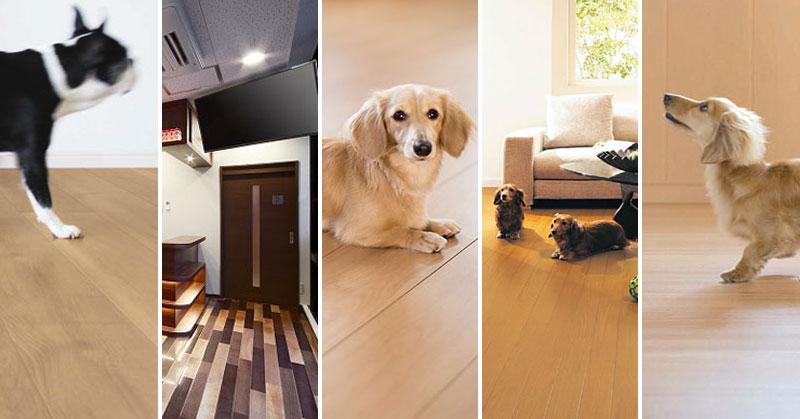 ペット用のすべりにくい床材まとめ