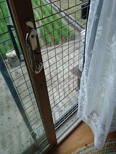 窓に金網して猫が逃げないようにした