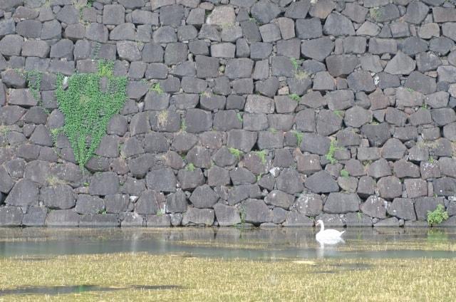 皇居の石垣