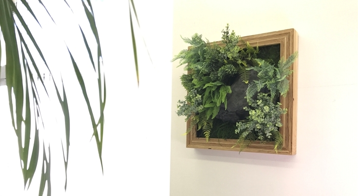 フェイクグリーンの室内緑化