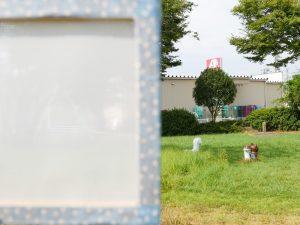 「クロスキャビン®(ホワイト)」越しの景色の見え方